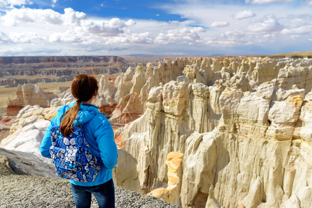 Hiker admiring views of stunning colorful sandstone formations of Coal Mine Canyon, Arizona, USA Stock Photo