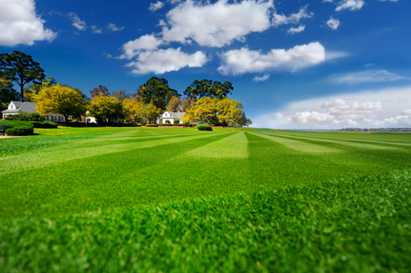 garden lawn: Perfectly striped freshly mowed garden lawn on bright summer day Stock Photo