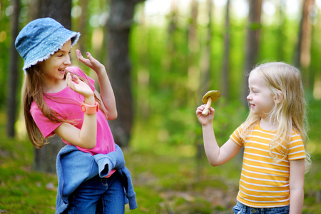mushroom picking: Two funny little sisters having fun during forest hike on beautiful autumn day