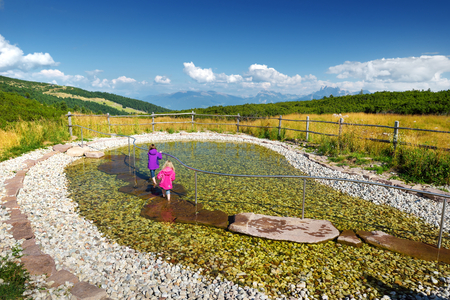 strengthen: Two kids plunging their legs into and pulling them out of cold clear water to increase well-being and strengthen the immune system, timulate the metabolism and blood circulation. Rittner Horn, Italy.
