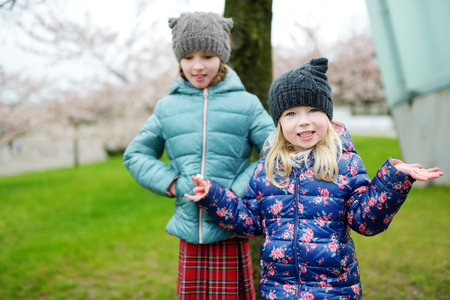 Two cute little sisters having fun in blooming cherry garden on beautiful early spring day