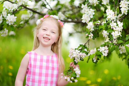 Adorable little girl in blooming apple tree garden on beautiful spring day. Cute child picking fresh apple tree flowers at spring.