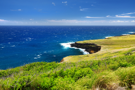 Beautiful landscape of South Big Island of Hawaii, USA