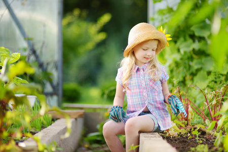 Adorable little girl wearing straw hat and childrens garden gloves playing with her toy garden tools in a greenhouse on sunny summer day