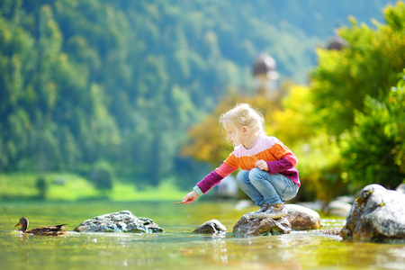 Adorable girl playing by Konigssee lake in Germany on warm summer day. Cute child having fun feeding ducks and throwing stones into the lake. Summer activities for kids.
