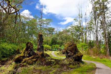 Lava molds of the tree trunks that were formed when a lava flow swept through a forested area in Lava Tree State Monument on the Big Island of Hawaii, USA Stock Photo