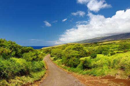 Beautiful landscape of South Maui. The backside of Haleakala Crater on the island of Maui, Hawaii, USA 免版税图像