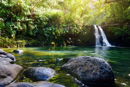 Tropical waterfall Lower Waikamoi Falls and a small crystal clear pond, inside of a dense tropical rainforest, off the Road to Hana Highway, Maui, Hawaii, USA