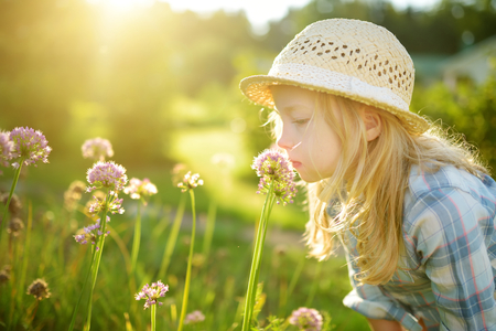 Cute little girl wearing straw hat admiring tall purple garlic flowers on sunny summer day. Child and flowers, summer, nature and fun. Summer holidays.