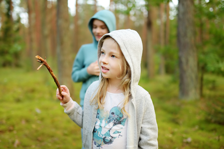 Two cute young sisters having fun during forest hike on beautiful summer day. Children exploring nature. Active family leisure with kids. Family fun. Foto de archivo