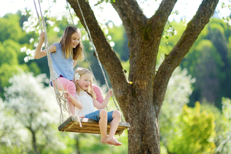 Two cute sisters having fun on a swing in blossoming old apple tree garden outdoors on sunny spring day. Spring outdoor activities for kids. 免版税图像