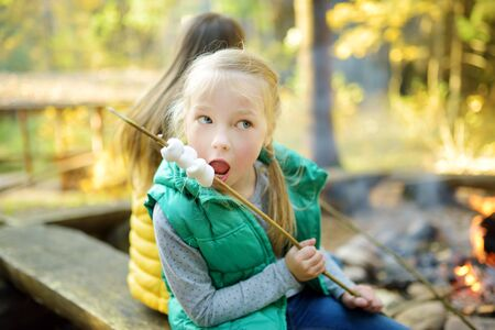 Cute young sisters roasting marshmallows on stick at bonfire. Children having fun at camp fire. Camping with children in fall forest. Family leisure with kids at autumn. Banque d'images