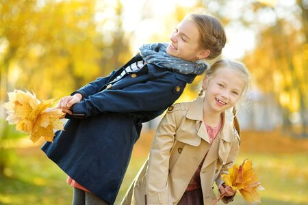 Two cute young sisters having fun on beautiful autumn day. Happy children playing in autumn park. Kids gathering yellow fall foliage. Autumn activities for children.