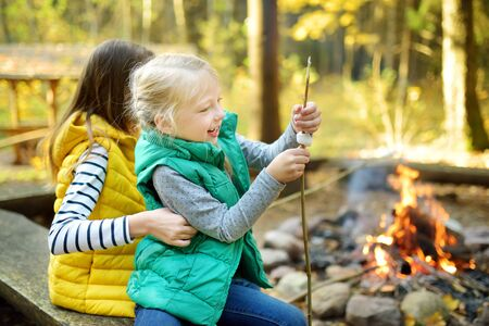 Cute young sisters roasting marshmallows on stick at bonfire. Children having fun at camp fire. Camping with children in fall forest. Family leisure with kids at autumn. 免版税图像