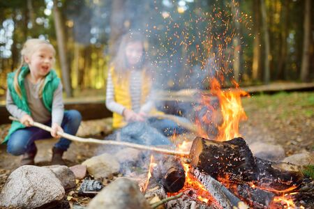 Cute young sisters roasting hotdogs on sticks at bonfire. Children having fun at camp fire. Camping with kids in fall forest. Family leisure with kids at autumn. Stock Photo