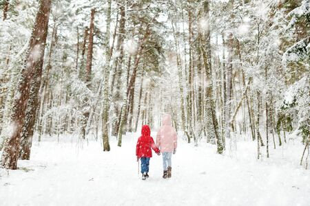 Two adorable little girls having fun together in beautiful winter forest. Beautiful sisters playing in a snow. Winter activities for kids.