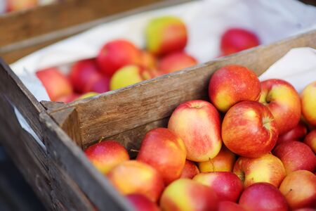 Fresh red and yellow apples in wooden crates sold on farmers food market during annual spring fair in Vilnius, Lithuania