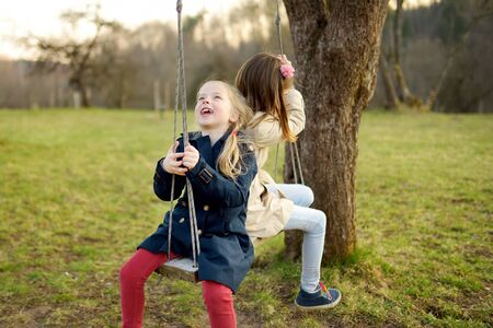 Two adorable young girls having fun on a swing together in beautiful spring park. Cute sisters playing outdoors in early spring. Outdoor activities for family with kids.