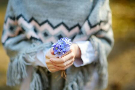 Young girl picking the first flowers of spring in the woods on beautiful sunny spring day. Close-up on childs hands holding flowers. Kid exploring nature.