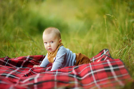 Cute five months old baby boy on his hands and knees on a blanket in a park on sunny summer day. Infant having fun outdoors. Adorable little child learning to crawl.