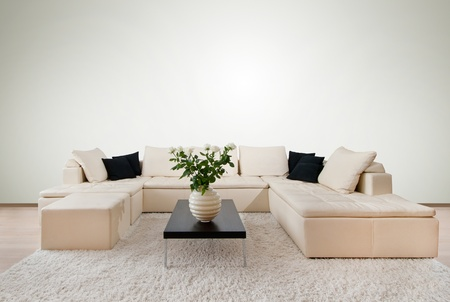 Modern interior with free wall space  photo