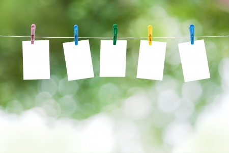 clothesline: Blank photos hanging on a clothesline, summer defocus background