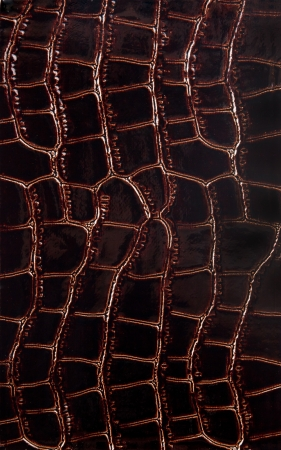 snakeskin: Exotic leather