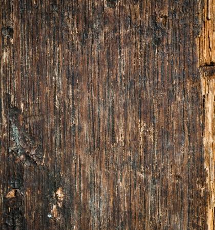 knotting: Old cracked wood background