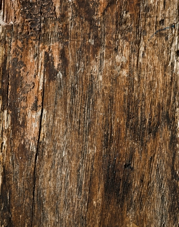 Old cracked wood background Stock Photo - 17206970