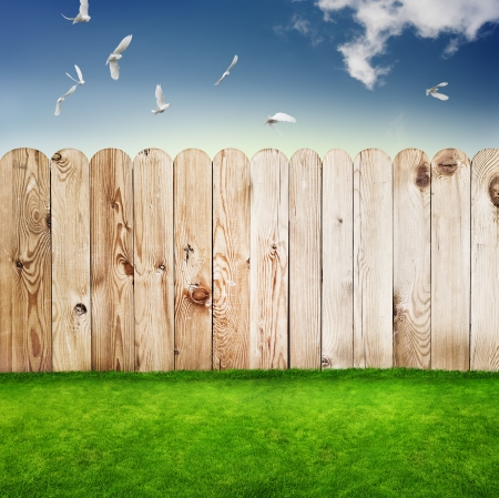 Wooden fence in a green grass  photo