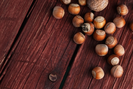 Walnuts and hazelnuts on rustic dark wood background photo