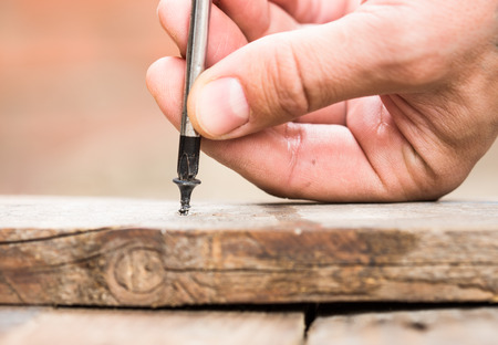 screwed: Screw screwed into wooden plank with a screwdriver