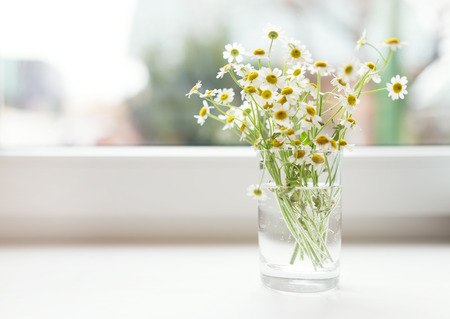Bouquet of chamomiles flowers on the window sill