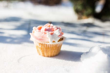 sugarpaste: Outdoor photo of cupcake decorated with a sugar butterfly. Cupcake standing on fresh snow at sunny winter day.