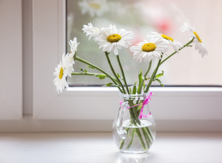 sill: Bouquet of chamomiles flowers on the window sill.