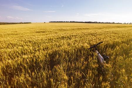 outdoor photo: Summer outdoor photo e-bike in gold wheat field.