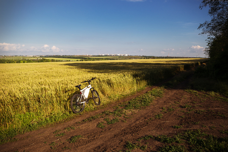 nonpolluting: Mountain bicycle at sunny day on the dirt road. Stock Photo