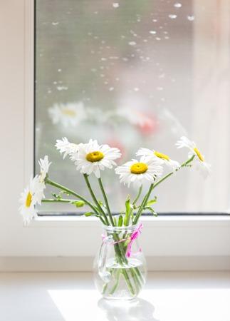 vasos de agua: Ramo de manzanillas flores en el alféizar de la ventana.