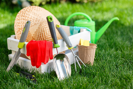 Gardening tools and utensils on green meadow, garden manteinance and hobby concept Stock Photo