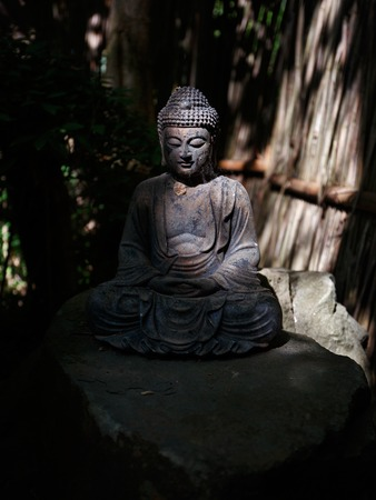 Stock Photo   Stone Buddha Statue In Shadowy Overgrown Garden