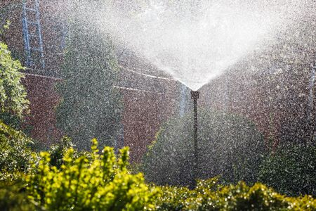 Irrigation system sprays water in the home garden