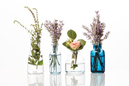 Flowers and herbs in glass bottles. Abstract flower bouquets in bottles isolated on white Reklamní fotografie