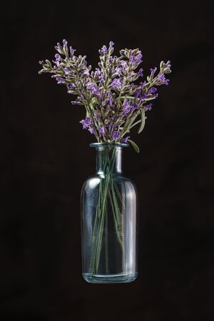 Blue glass bottle with lavender flowers on black background. Aromatherapy Reklamní fotografie