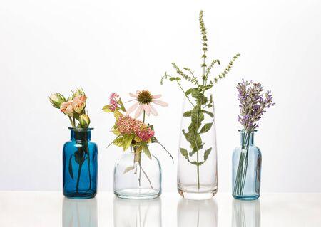 Fleurs et herbes dans des bouteilles en verre. Bouquets de fleurs abstraites en bouteilles isolated on white Banque d'images