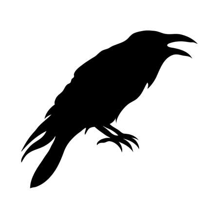 Ravens black silhouette. Vector illustration isolated on white background EPS 10