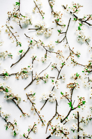 Pattern with white flowers and branches white background. Flat lay, top view Zdjęcie Seryjne