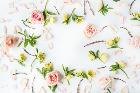 Frame met roze rozen, takken, bladeren en bloemblaadjes op een witte achtergrond. plat, bovenaanzicht Stockfoto