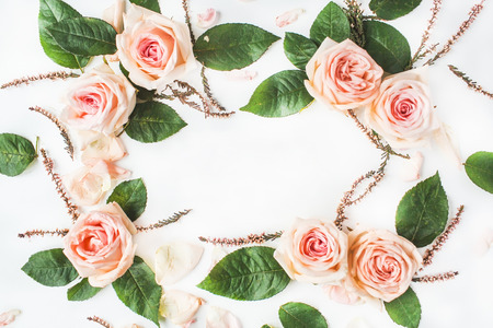 leaves frame: frame with pink roses, branches, leaves and petals isolated on white background. flat lay, overhead view