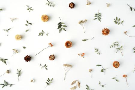 노란색 마른 꽃, 나뭇 가지, 나뭇잎과 꽃잎 패턴 흰색 배경에 고립입니다. 평면 평신도, 오버 헤드보기