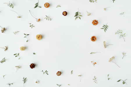 frame with yellow dry flowers, branches, leaves and petals isolated on white background. flat lay, overhead view Zdjęcie Seryjne
